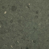 Jura Green Limestone by Stone Center, Inc Portland OR